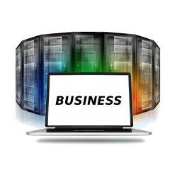 Webhosting-Paket: Business